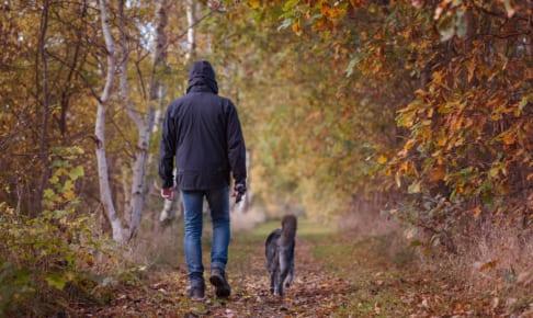 犬のエキノコックス症を徹底解説!犬の病気を正しく知ろう